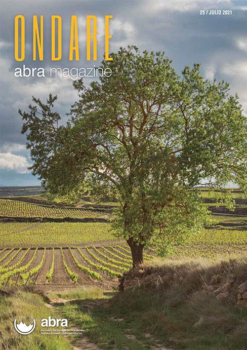 Revista Ondarre 25